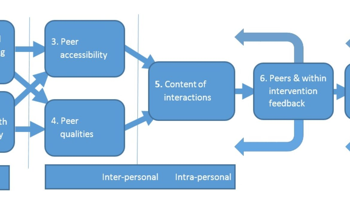 Diagram showing key features to consider for successful breastfeeding peer support